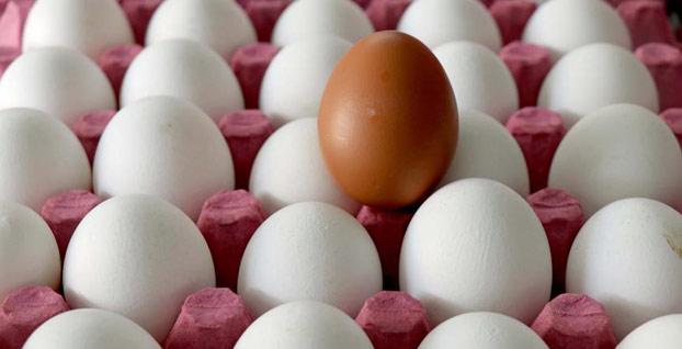 Yumurta fiyatından memnun olan yok