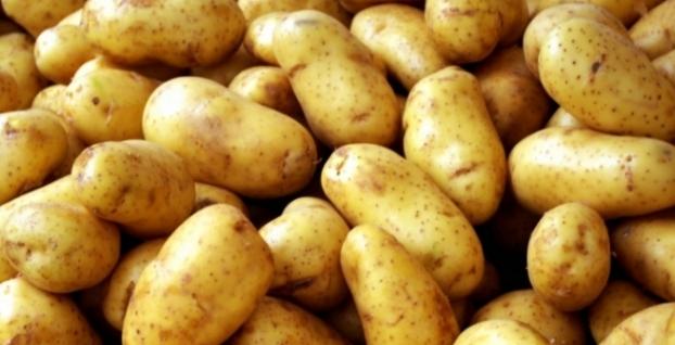 KKTC'de patates fiyatı şoke etti