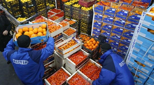 Rusya'nın Türkiye'den sebze ithalatı yasağını kaldırması bekleniyor