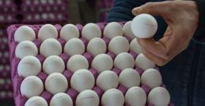 Yumurtada artan fiyatlardan üretici de mutsuz