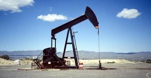 Petrolde ticaret savaşı fiyatlamaları