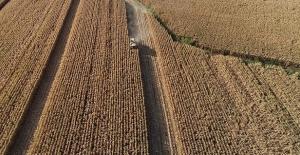 Hazineye ait tarım arazileri için kaç kişi başvurdu? Bakan açıkladı