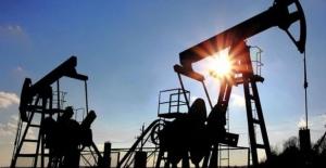 Petrol altı hafta aranın ardından yükseldi