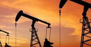 Petrol rekor düşüş serisinin ardından yükseldi