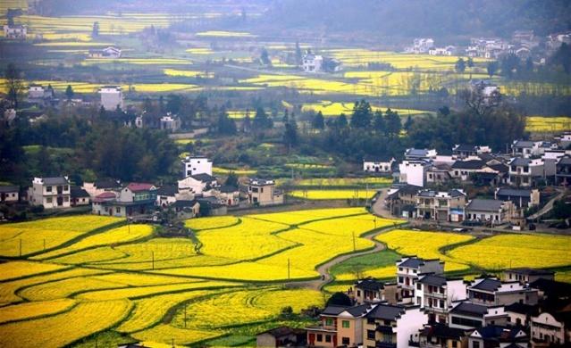 Çin'de mutlaka görülmesi gereken bir yer: Anhui