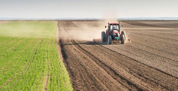 Çiftçilerin Hazine arazilerini kiralama başvurusu için son gün