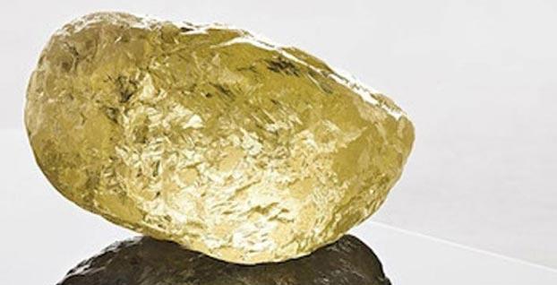 Kuzey Amerika'nın en büyüğü bulundu