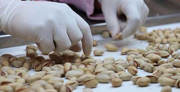 Antep fıstığı da 'Çin Seddi'ni aştı