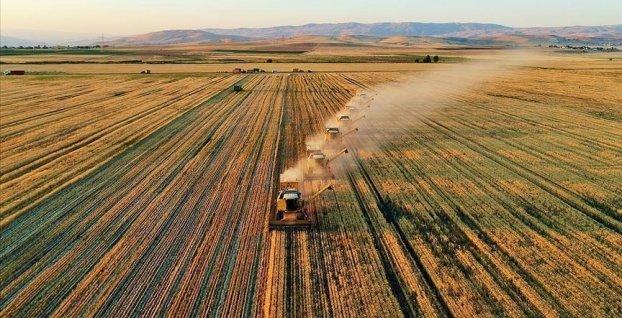Tarım ve Orman Bakanlığı'ndan organik üretime destek