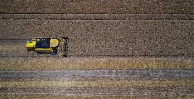 TÜİK, Tarım-GFEistatistiklerini açıkladı