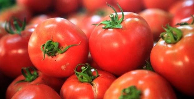 Yaş meyve sebze ihracatının şampiyonları belli oldu