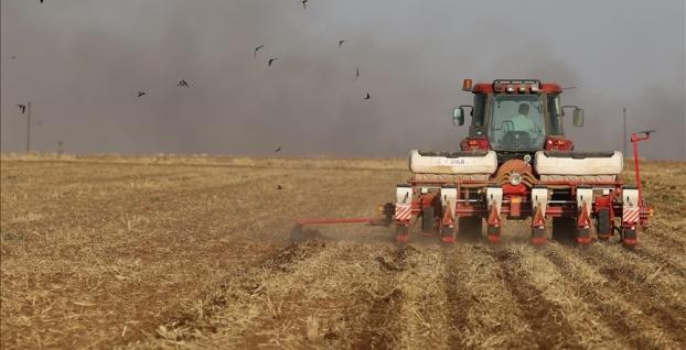 TÜİK: Tarımsal girdi fiyat endeksi ağustosta arttı