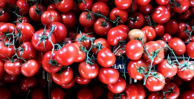 Türkiye 9 ayda 53 ülkeye domates ihraç etti