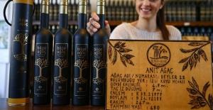 18 asırlık zeytinlerin yağı 200 liradan satılıyor