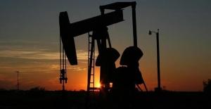Petrol fiyatları 13 ayın en düşüğünü gördü