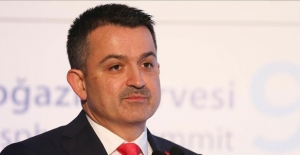 Tarım Bakanı Pakdemirli'den 'ithal et' açıklaması