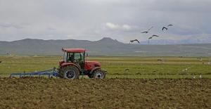 Çiftçiye şubatta milyarlarca lira tarımsal destek