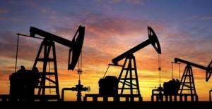 TPAO Adana'da petrol arayacak