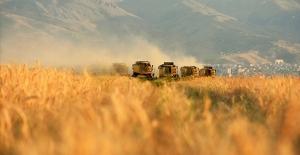 TÜİK, ocak ayına ilişkin Tarım-GFE verilerini açıkladı