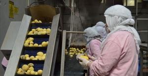 İSO: Gıda şirketlerinde 134 bin kişi istihdam edildi