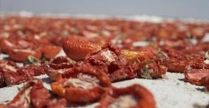 Kuru domates ihracatı yüzde 29 arttı