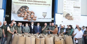 TMO Genel Müdürü: 'Fındık ülkemizin ihracatında önemli bir ürün'