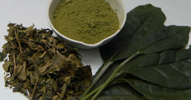 Yaş çaya 12 kuruş fark desteği