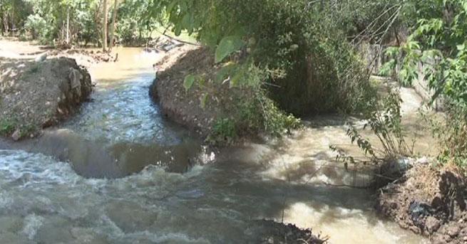 Çiftçiler kuraklık yüzünden tarlaları kanalizasyonla suluyor
