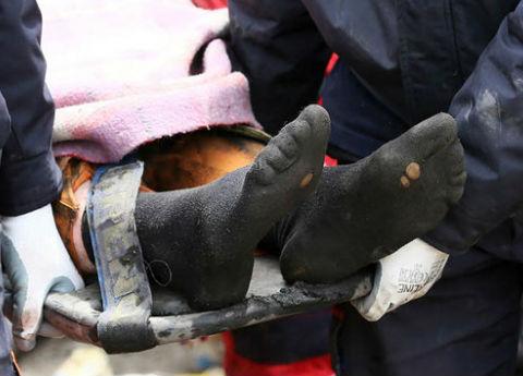 Madende ekim ayı bilançosu ağır oldu