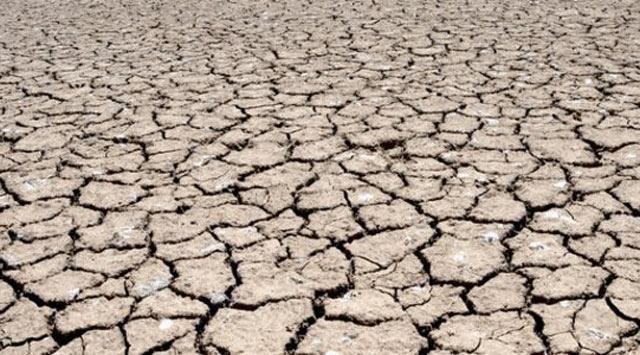 103 kişi kuraklık nedeniyle öldü