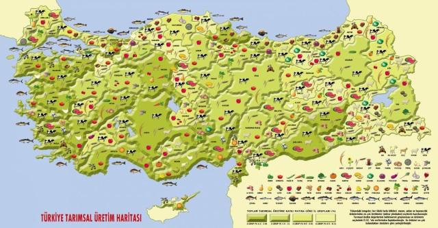 Avrupa'nın en büyük tarımsal hasılasını biz üretiyoruz